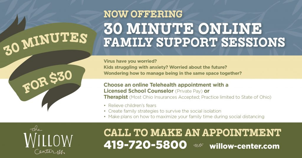 Family Therapy Sessions Online